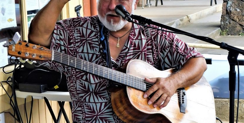 What Is The Hawaiian Guitar Called
